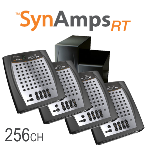 SynAmps RT 256-ch